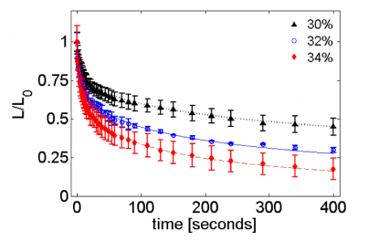 Decay of wrinkle length as a function of time on plasticized PS (99 kDa, 116 nm) films.